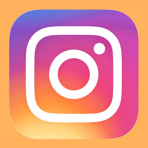 logo_instagram_fischer_reunion.png